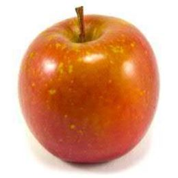 Picture of APPLE FUJI EACH