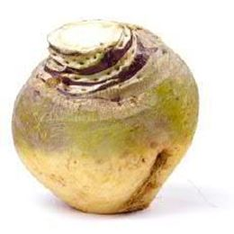 Picture of SWEDE EACH