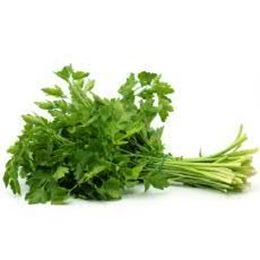 Picture of  FRESH PARSLEY
